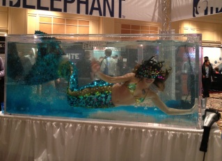 MermaidBooth